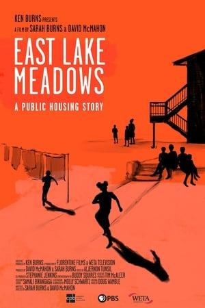 East Lake Meadows: A Public Housing Story (TV Movie 2020)