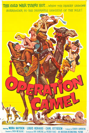 Operation Camel