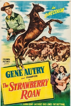 The Strawberry Roan (1948) — The Movie Database (TMDb) - photo#13