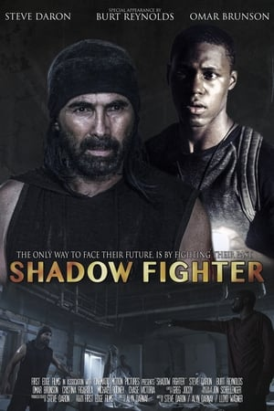 Assistir Shadow Fighter online