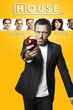 Baixar Serie Dr. House 7ª Temporada Dublado via Torrent