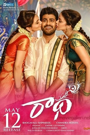 Radha (2017) Telugu Movie 720p UNCUT HDRip x264 [Dual Audio] [Hindi DD 2.0 – Telugu DD 5.1] 1.2GB Download