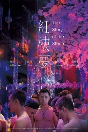 The Story of the Stone (2018)