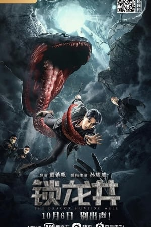 Locked Dragon Well (2020)