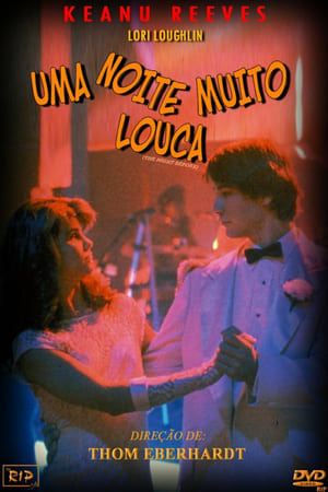 Uma Noite Muito Louca (1988) Dublado Online