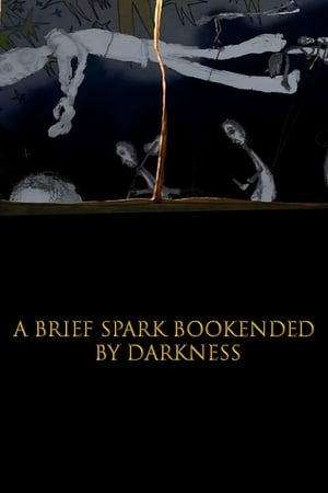 A Brief Spark Bookended by Darkness