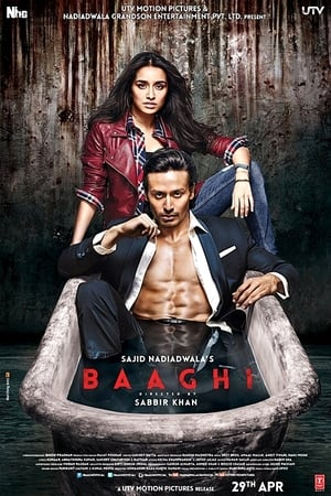 Baaghi: A Rebel For Love (2016)