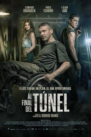 At the End of the Tunnel (2016) online subtitrat