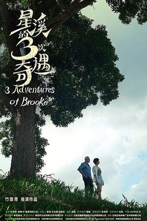 Three Adventures of Brooke (2019)