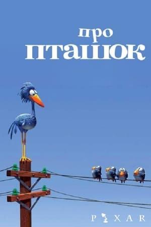 Про пташок