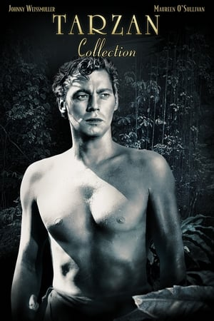 Tarzan (Johnny Weissmuller series)