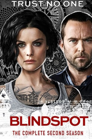 Blindspot S02E12 – 2X12 Legendado HD Online