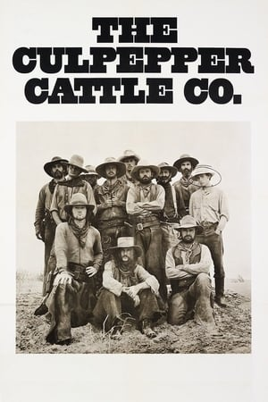 The Culpepper Cattle Co. (1972)