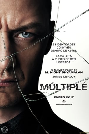 Split (Fragmentado) Múltiple