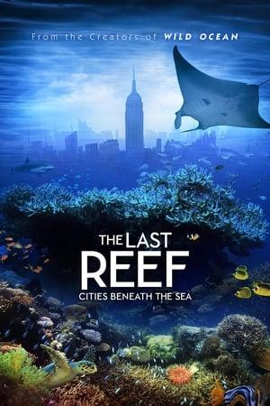 Image Rạn san hô cuối cùng: Các thành phố dưới biển