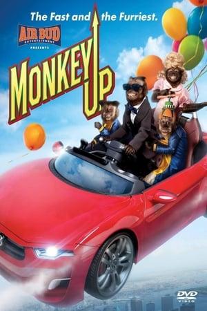 Monkey Up FRENCH 216