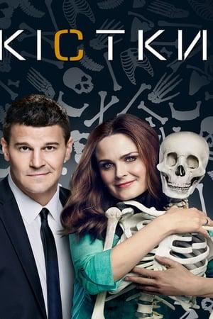 Кістки