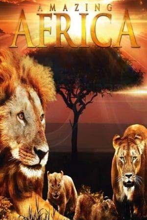 Image Châu Phi Huyền Diệu