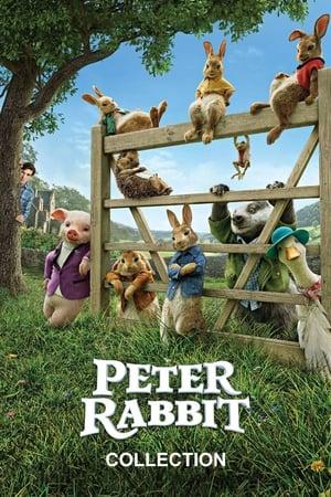 Peter Rabbit - Collezione
