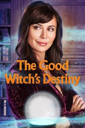 The Good Witch's Destiny (TV Movie 2013)