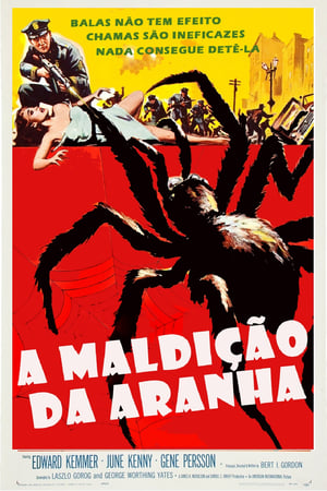 Assistir A Maldição da Aranha online