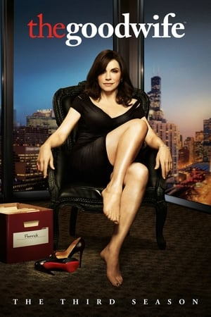 The Good Wife Season 3 putlocker9