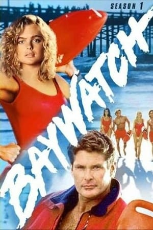 Baywatch season 1 123movies