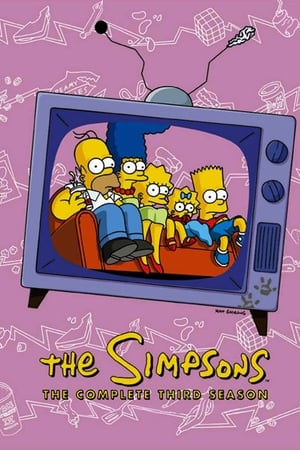 Los Simpson Temporada 3