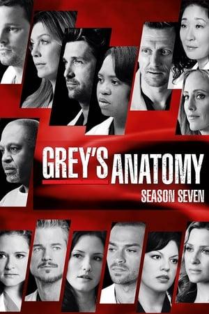 Grey\'s Anatomy - Die jungen Ärzte | Staffel 7 | Serie 2005 ...