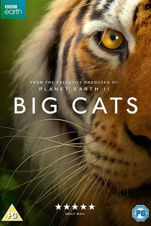 Великі кішки