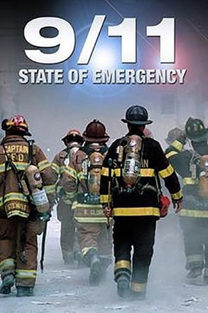 9/11 State of Emergency