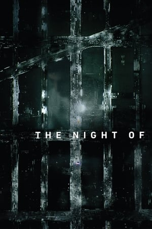 The Night Of – Todas as Temporadas Dublado / Legendado (2016)