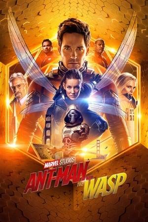 Hombre Hormiga y Avispa (Ant-Man 2) - 2018