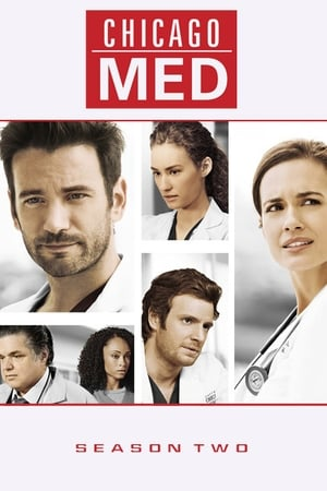 Baixar Serie Chicago Med 2ª Temporada (2015) HDTV 720p Legendado Download Torrent