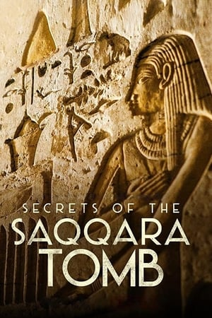 Secrets of the Saqqara Tomb (2020)