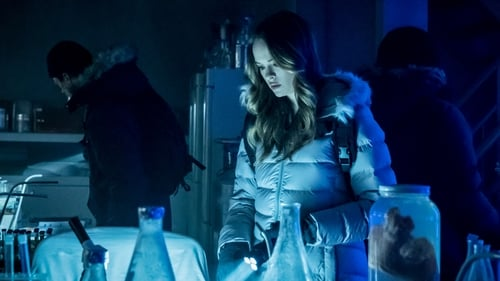 VER The Flash Temporada 5 Capitulo 6 Online Gratis HD