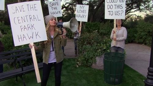 VER Cómo conocí a vuestra madre Temporada 9 Capitulo 21 Online Gratis HD