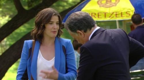 VER Cómo conocí a vuestra madre Temporada 8 Capitulo 23 Online Gratis HD