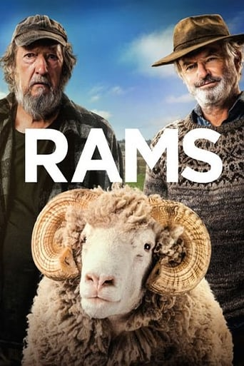 Watch Rams (2020) Fmovies