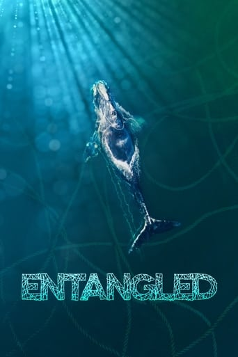 Watch Entangled: The Race to Save Right Whales from Extinction (2020) Fmovies