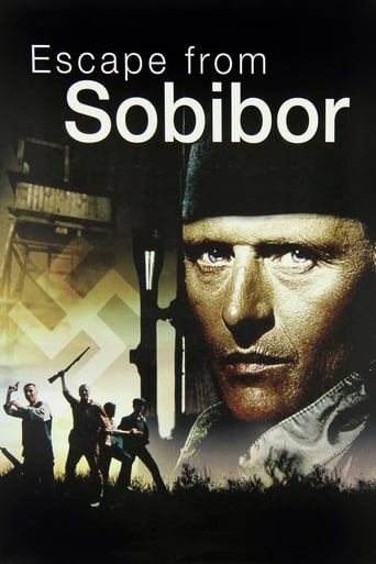 Image Escape from Sobibor