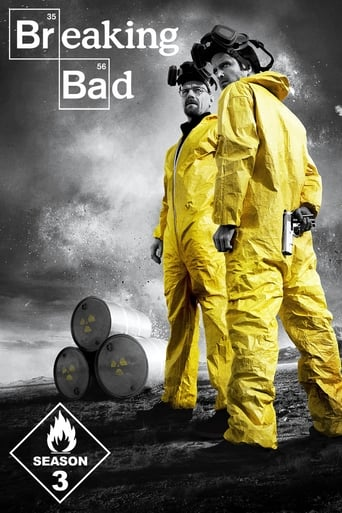 Bręstantis blogis / Breaking Bad (2010) 3 Sezonas