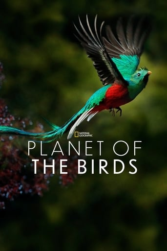 Planet of the Birds poster