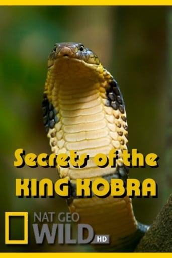 Poster of Secrets of the King Cobra