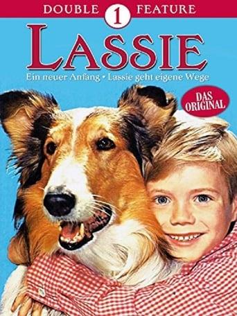 Poster of El retorno de Lassie