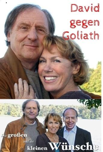 Poster of Die großen und die kleinen Wünsche - David gegen Goliath