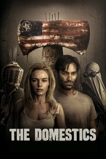 Poster of The Domestics