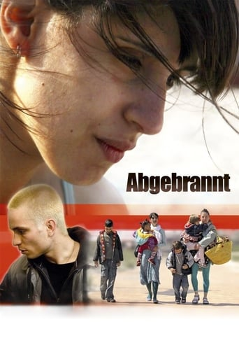 Poster of Abgebrannt
