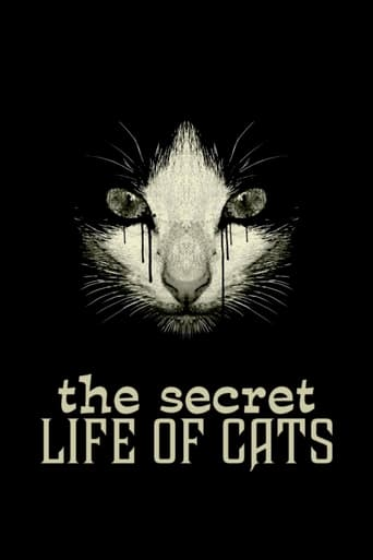 Poster of The Secret Life of Cats