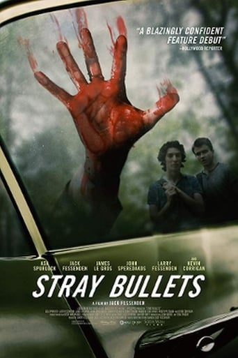 Poster of Stray Bullets